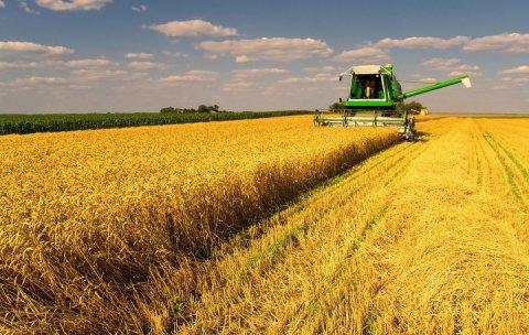 Рекордный экспорт зерна из России стал причиной разорения компаний США