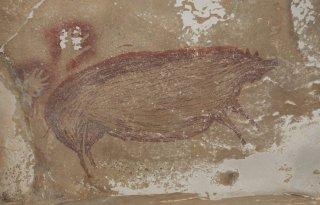 Найден наскальный рисунок возрастом более 45,5 тыс. лет