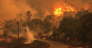 Пожар в Калифорнии уничтожил город с 150-летней историей